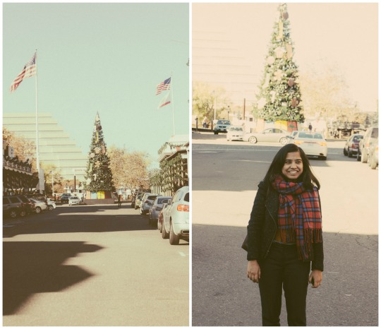 Sacramento California travel fall