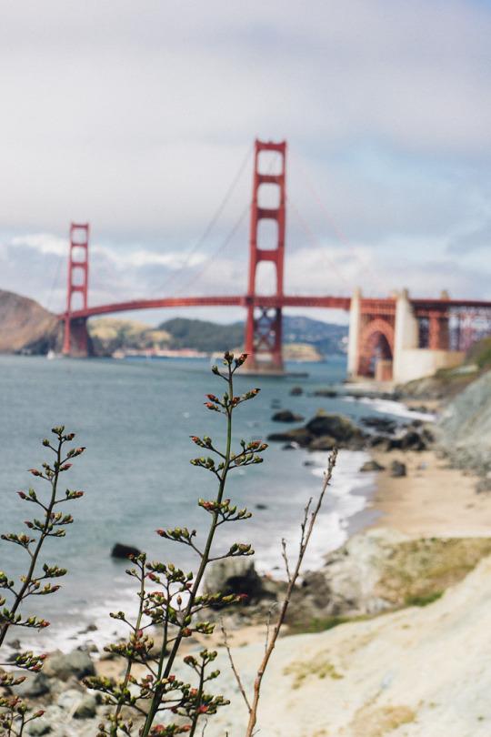 Golden gate bridge beach marshall's beach presidio San Francisco