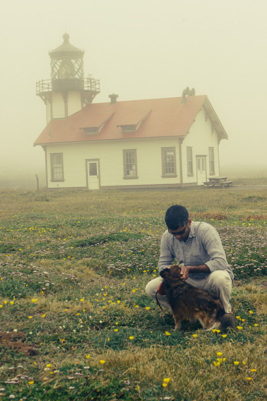 dog friendly guide to Mendocino, pet friendly activities in Mendocino, Mendocino with dogs, what to do with your dog in Mendocino