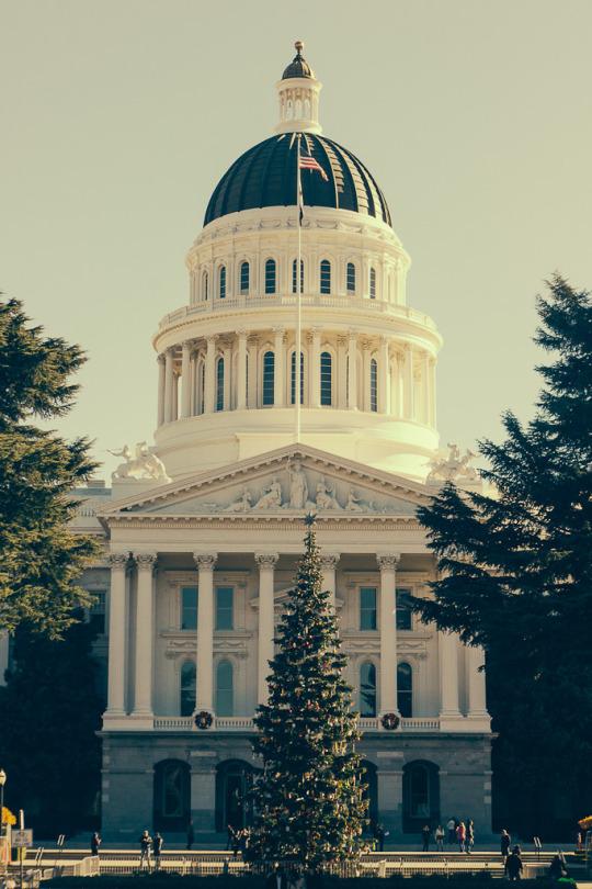 Dog friendly Sacramento, Sacramento Capitol