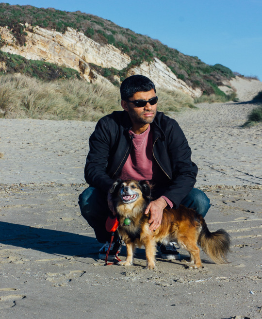Dog friendly things to do in Pt. Reyes, Kehoe Beach