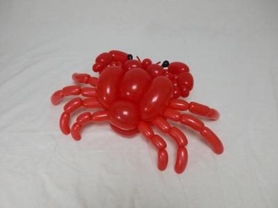 カニ crab 2015.12.20