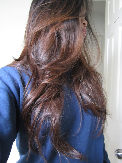 Best Light Brown Hair Dye