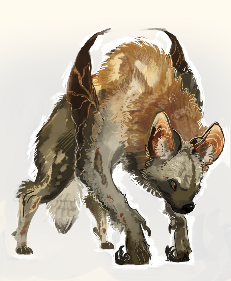 Pin by Kim Gammell on AC Mage Painting fur, Creature