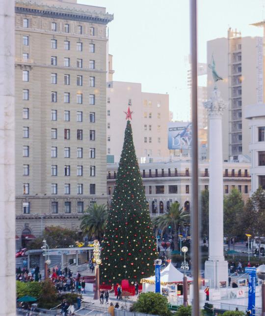 Christmas Tree at Union Square, San Francisco