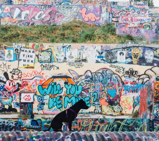 murals of Austin, graffiti park