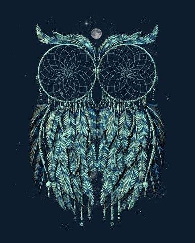 Dreamcatcher Owl art