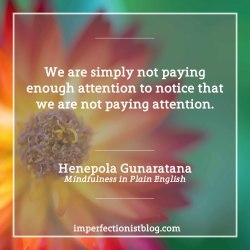 """#302 - A quote from Mindfulness in Plain English: """"We are simply not paying enough attention to notice that we are not paying attention."""""""