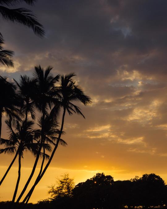 Mahai'ula beach, Kona, Big Island