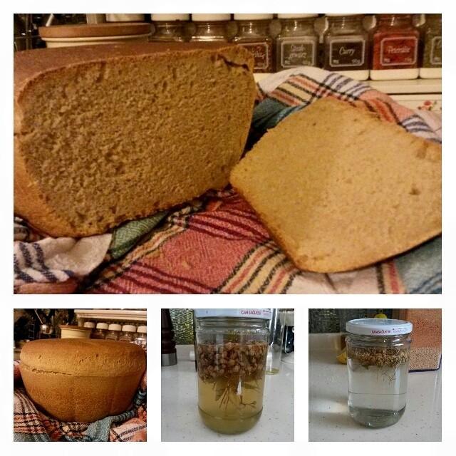 IHLAMUR ÇİÇEĞİNDEN EKMEK MAYASI Ihlamur çiçeğinin mis gibi kokusuyla, pofuduk, yumuşacık ve tatlı bir ekmek hayal edin. İşte o ekmek, bu ekmek… Eskiler ahşap fıçıların içine ufalarlarmış ıhlamurun yaprağını ve çiçeğini, su eklerlermiş üstüne. 12 saat...