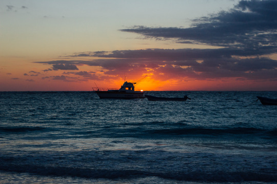Tulum Travel, Tulum Tips, Tulum Riviera Maya, Tulum Murals, Tulum Cenotes, Mexico Mayan Ruins, Mayan ruins, Mayan ruins in Mexico, Tulum tours, day tour from Tulum, beaches in Tulum