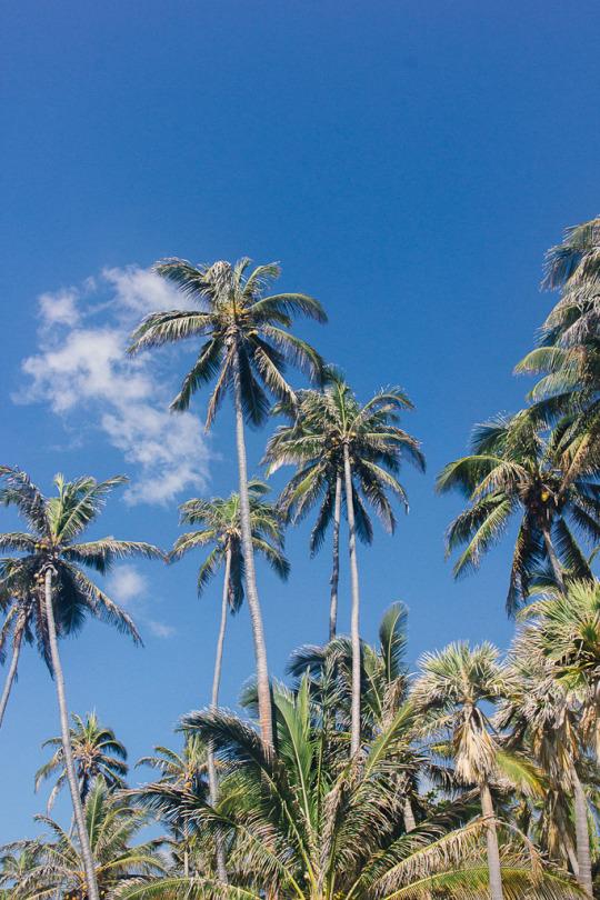 Road trip from Hilo to Kona, big island, Hawaii