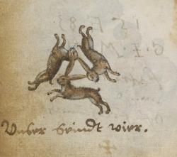 elias-the-wolfhound:Hare trinity