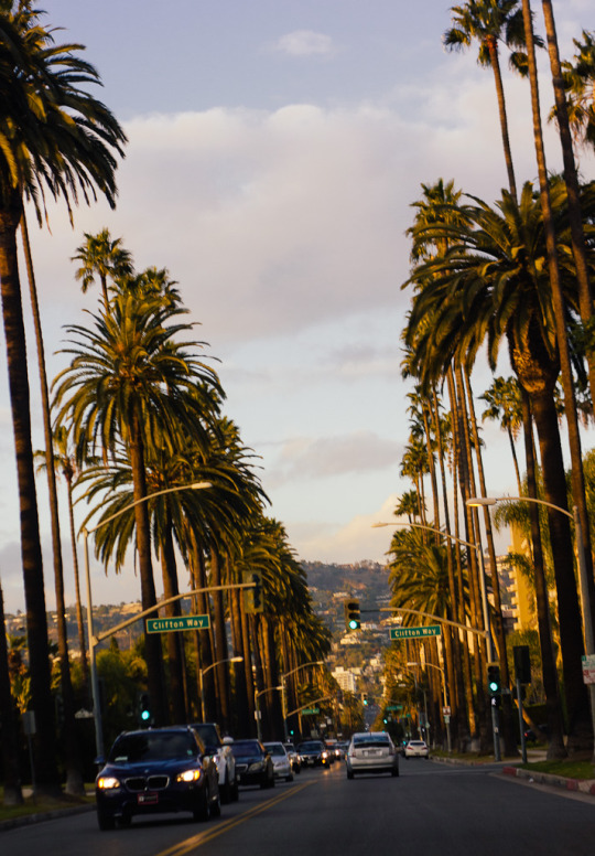 Los Angeles winter travel guide