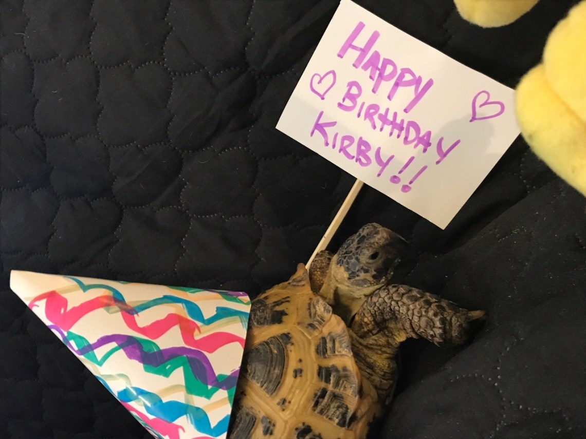 She was stomping all around with her Happy Birthday Kirby Sign