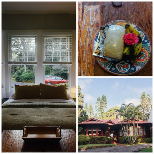 Three days in Big Island, what to do in Big Island, where to stay in Hilo