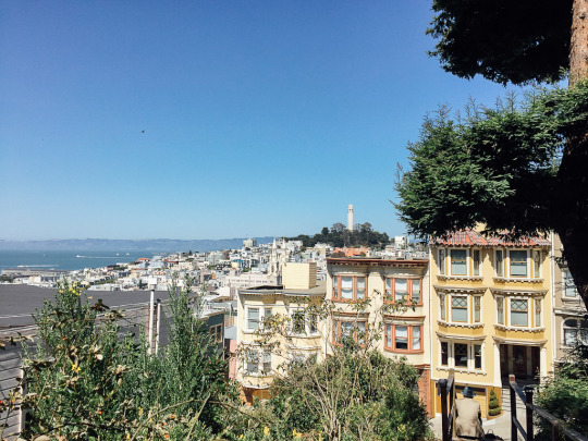 San Francisco sightseeing top 20 attractions