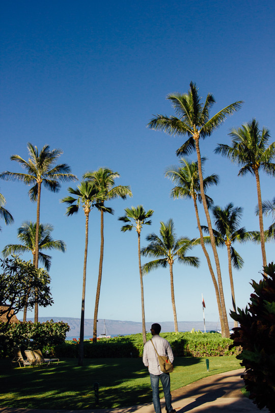 what to do in Maui, top things to do in Maui, Maui sightseeing, three days in Maui