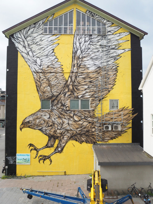 """zeds:""""Golden Eagle"""" by Dzia"""