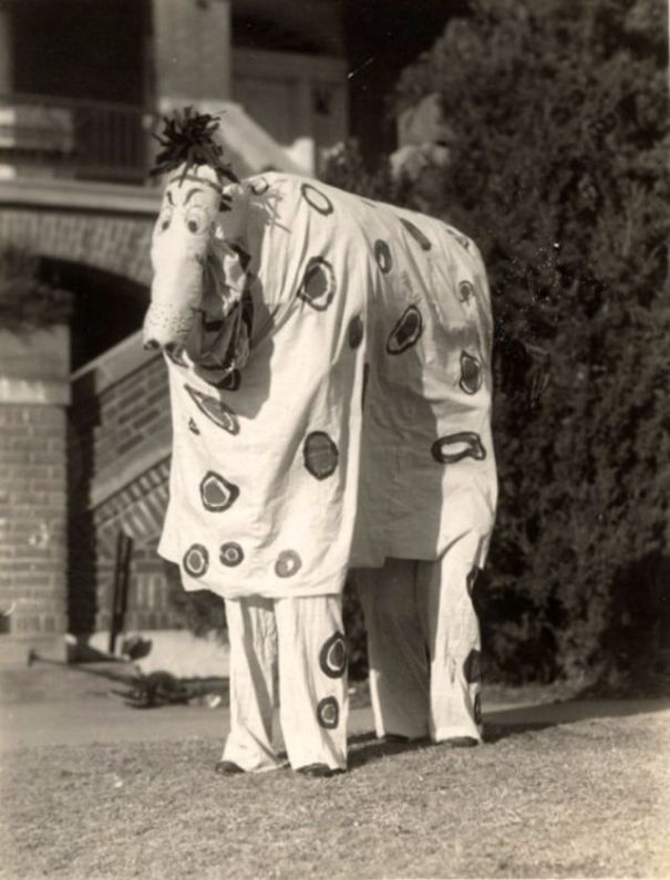 735eafb506a7b 40 vintage vernacular photographs of people in weird costumes ...