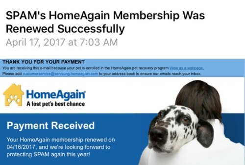 Things that really sucked today…. reading this email. To move to Hawaii each cat had to be microchipped and have an active account. Guess we forgot to turn off the auto renewal option. God I miss you baby boy. I certainly would pay a LOT more than...