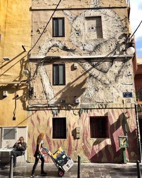 streetheart-serendipity:  🔹El gato🔹Artist:?#streetartvalencia #valencia #streetart #graffiti #urbanart #wallpainting #streetartist #graf #rsa_graffiti #dsb_graff #tv_streetart #streetartistry #streetartandgraffiti #wallporn #streetarteverywhere #streetphotographer #streetphoto #urban #streetlife #urbanandstreet #ig_streetphotography #colorful #be_one_urbanart #picoftheday #instagood #instalike #tv_strideby #imjustpassing #instapic (à Valencia)