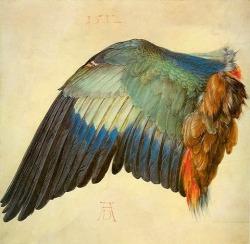 giodelcasoworld:Albrecht Dürer