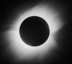 astronomyblog:   Photograph of the May 1919 solar eclipse captured by Arthur Eddington, which proved Einstein's theory of general relativity. Credit: SSPL/Getty Images