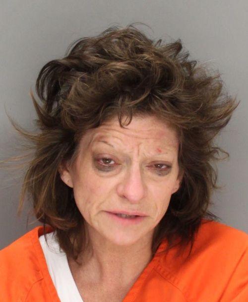 Current Arrests Ada County