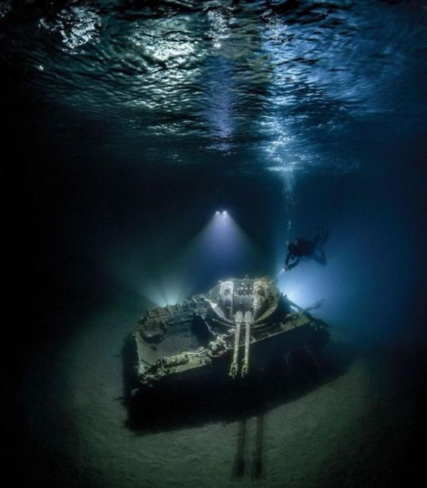 15 Best Underwater Photos Of 2018