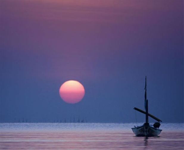 28 Photos To Feel The Soothing Beauty Of Sun