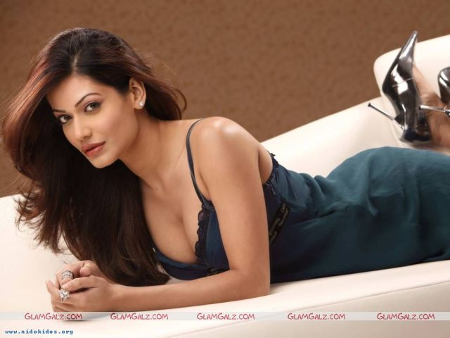 Click to Enlarge - Payal Rohtagi Wallpapers