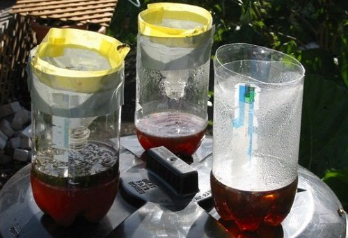 12 Ways To Give A New Life To Old Plastic Bottles