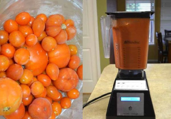 Learn How To Make Tomato Powder At Home