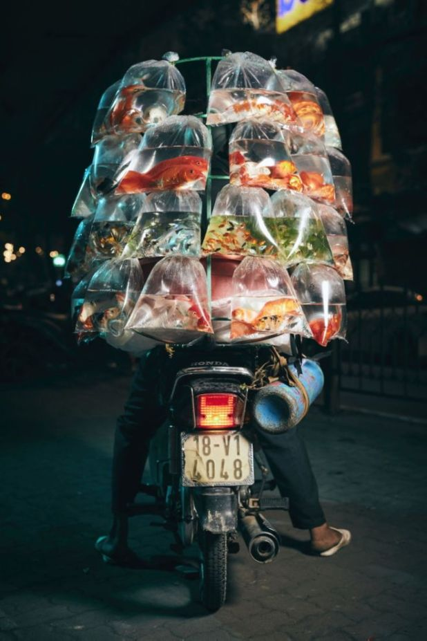 Top 15 Entries From The Smithsonian Magazine Photo Contest 2020