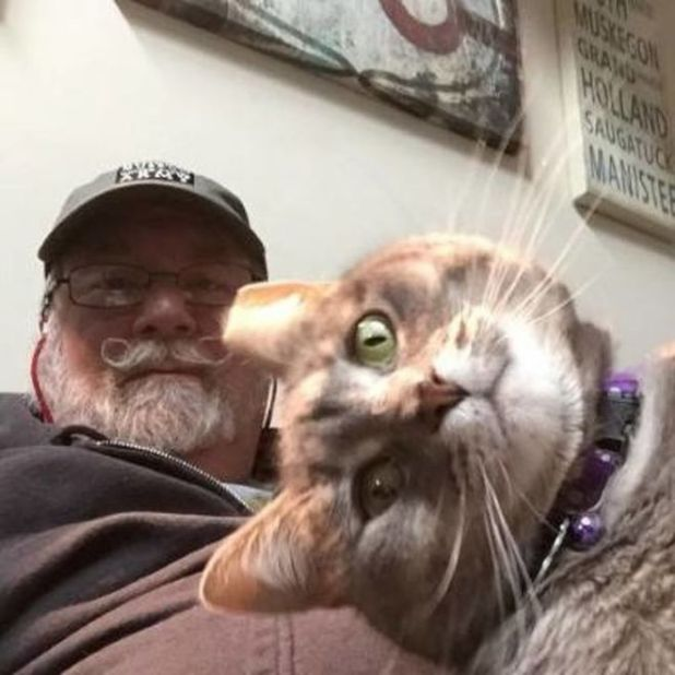 These 20 Cats That Take Better Selfies Than You