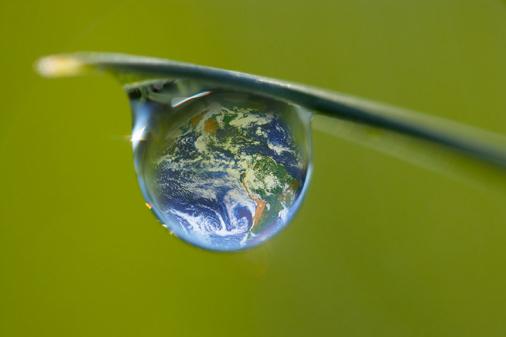 L'urgence radicale d'une Organisation mondiale de l'environnement