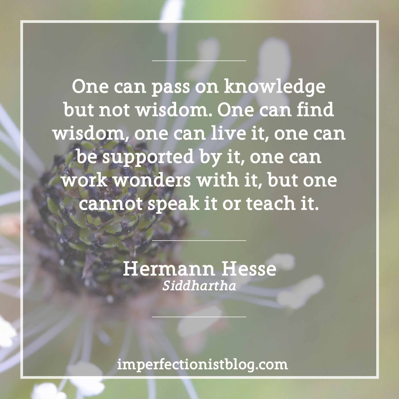 "imperfectionistbooks:""One can pass on knowledge but not wisdom. One can find wisdom, one can live it, one can be supported by it, one can work wonders with it, but one cannot speak it or teach it."" -Hermann Hesse (Siddhartha)"