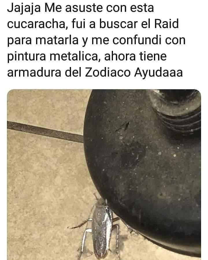 Cucarachas del zodiaco