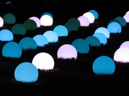 Lights in shades of blue at Christmas at Kew.