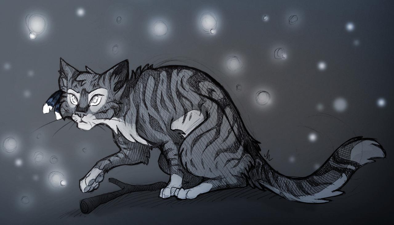 Pin by Lorelei Hughes on Warrior cats Warrior cats, Warrior