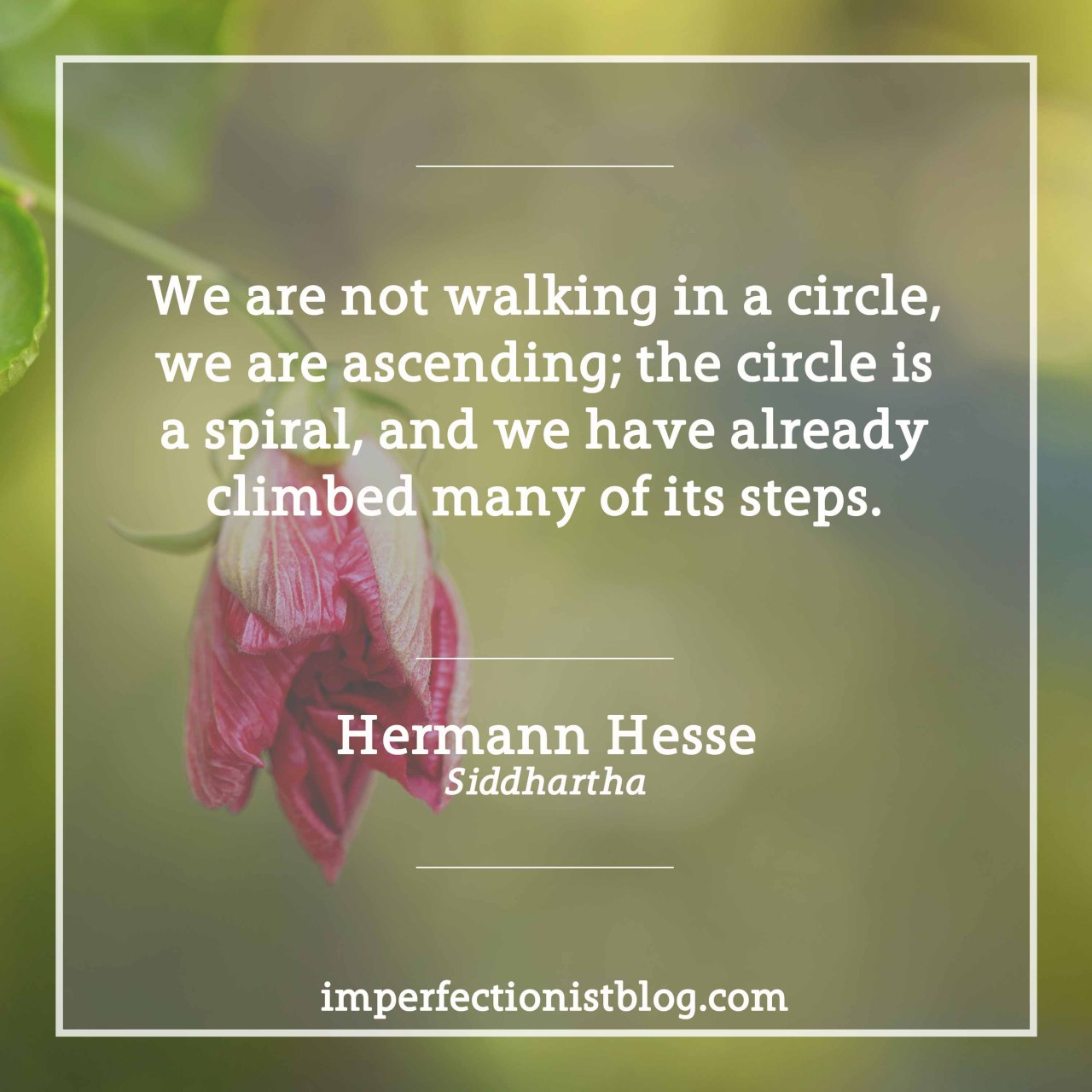 "imperfectionistbooks:A quote from Siddhartha, our #bookclub read: ""We are not walking in a circle, we are ascending; the circle is a spiral, and we have already climbed many of its steps.""  #324 - ""We are not walking in a circle, we are ascending; the circle is a spiral, and we have already climbed many of its steps."""
