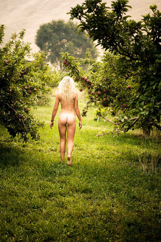 *In with the Apples*