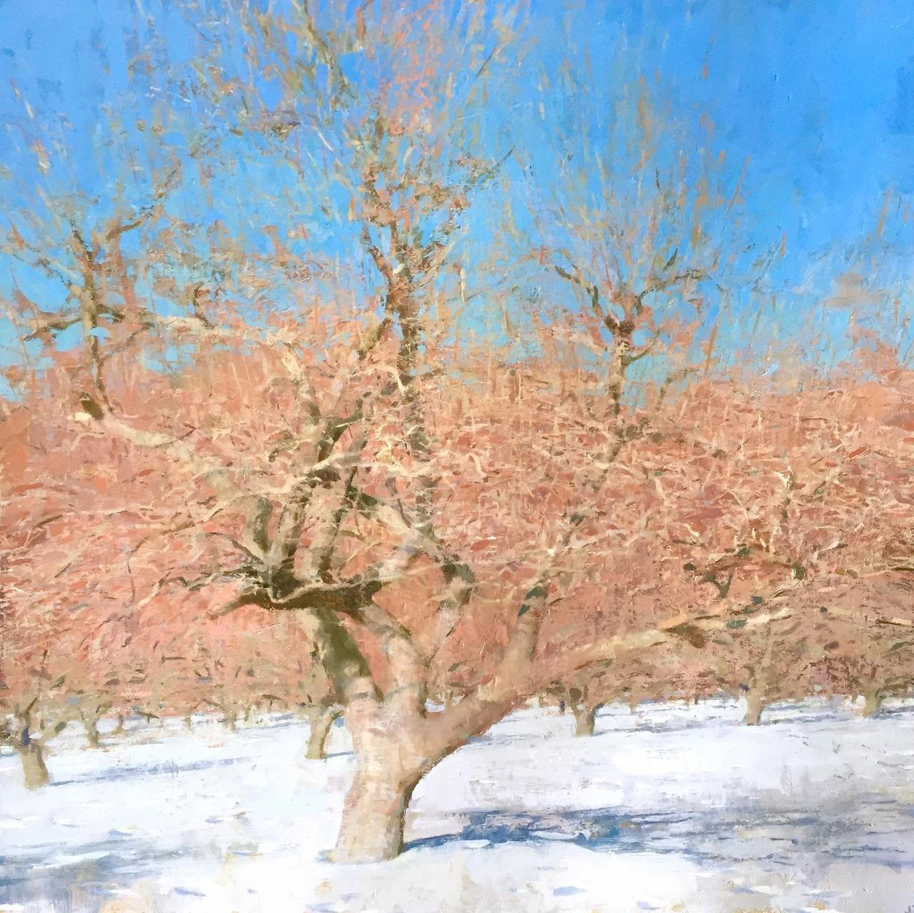 """Jon Redmond Apple Tree, Winter 24""""x24"""", oil on board"""