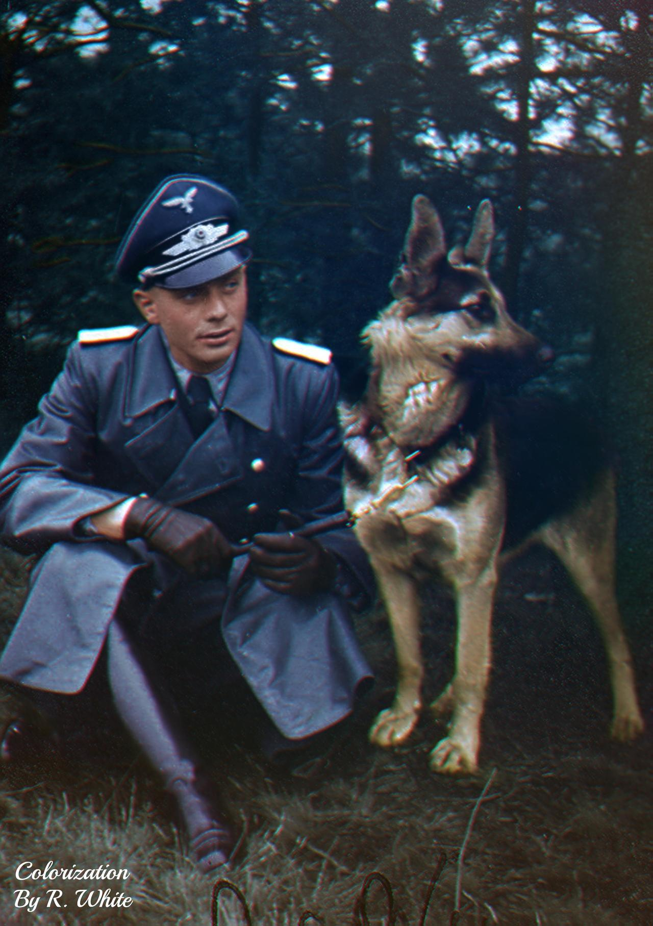 An unknown Luftwaffe officer with his German S… – History