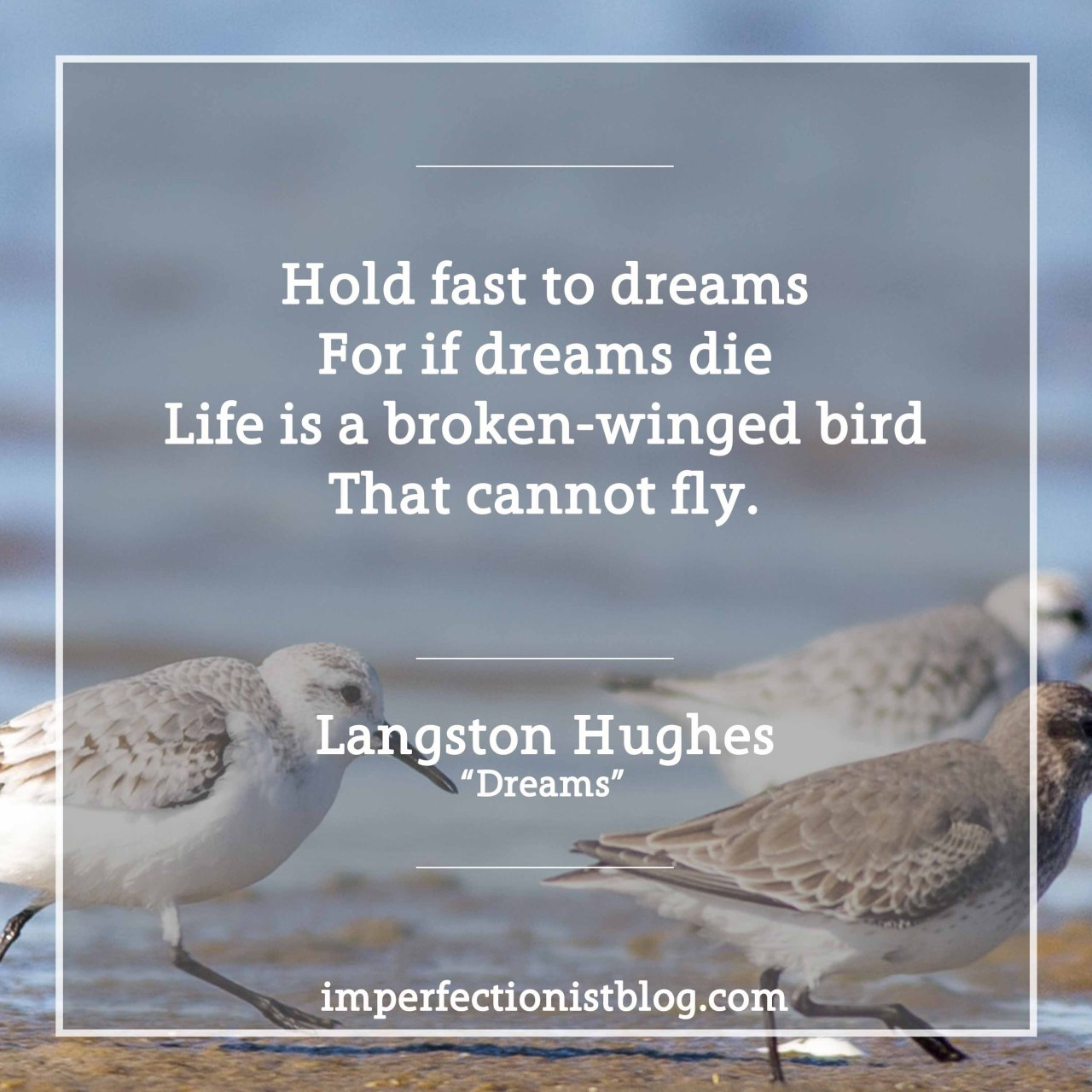 "#96 - Langston Hughes, born on this day in 1902, on dreams:""Hold fast to dreams For if dreams dieLife is a broken-winged birdThat cannot fly.Hold fast to dreamsFor when dreams goLife is a barren fieldFrozen with snow.""