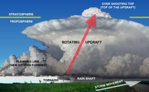 Science Visualized • THE FORMATION OF TORNADOES FROM SUPERCELL