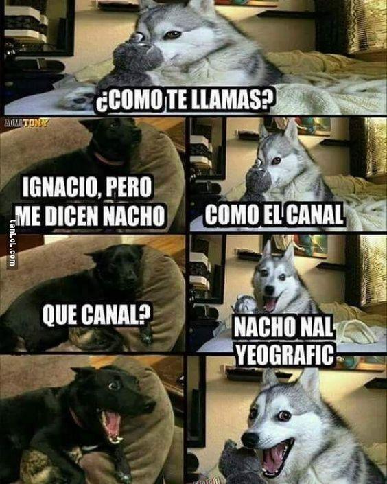 Nacho viene de Ignacio