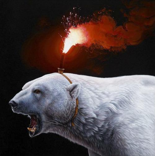 tumblr_p4vjf6KQ7g1qz6f9yo1_500 Ice bear, Jacub Gagnon Random