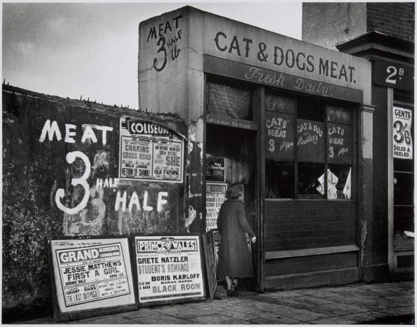 Cat and Dogs Meat Man, London, 1930's, via reddit – History